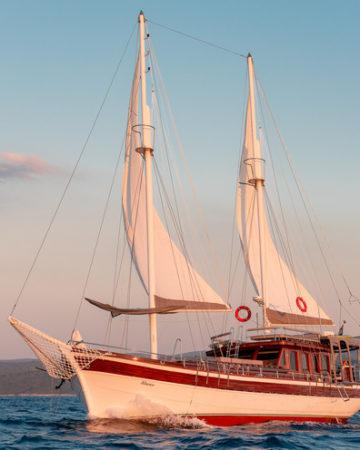 Gulet cruises